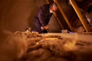 Technician Addresses Mold In Attic